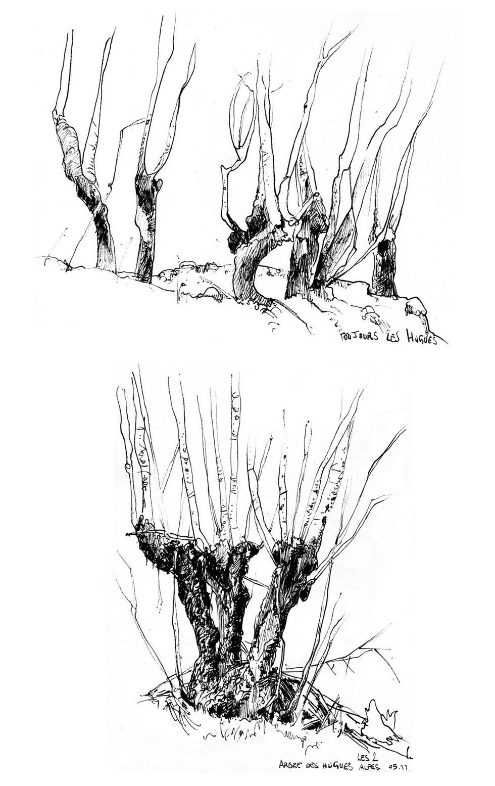 dessin-11