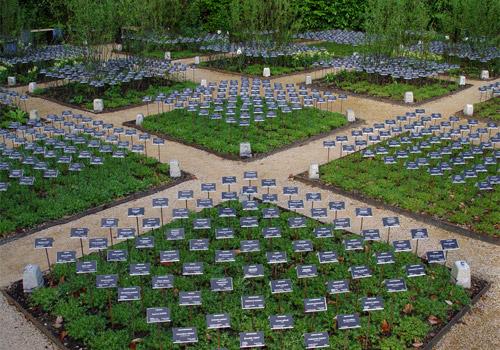 Jardin à Chaumont-sur-Loire